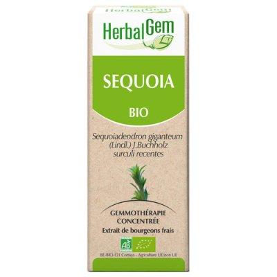 画像2: BIOジャイアント・セコイア ジェモレメディ・長寿、男性機能の向上に 50ml (単体植物) Herbalgem /ハーバルジェム