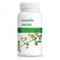 ボスウェリア(フランキンセンス) サプリ関節痛の軽減、炎症の鎮静に 120粒 Purasana / ピュラサナ