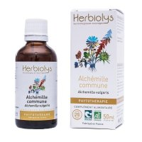 BIOアルケミラ(レディースマントル) マザーティンクチャー ホルモンバランスを整える  50ml Herbiolys / エルビオリス