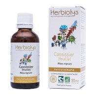 BIOカシスの葉 マザーティンクチャー 更年期やリウマチケアに 50ml Herbiolys / エルビオリス