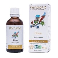 BIOオリーブ マザーティンクチャー 血液循環アップ、動脈保護  50ml Herbiolys / エルビオリス
