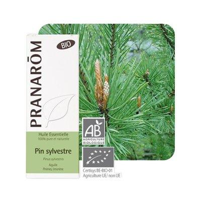 画像1: BIOアカマツ・ヨーロッパ (パイン) 精油 10ml Pranarom / プラナロム