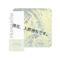 ゴールデンロッド(アキノキリンソウ) 精油 5ml Pranarom / プラナロム
