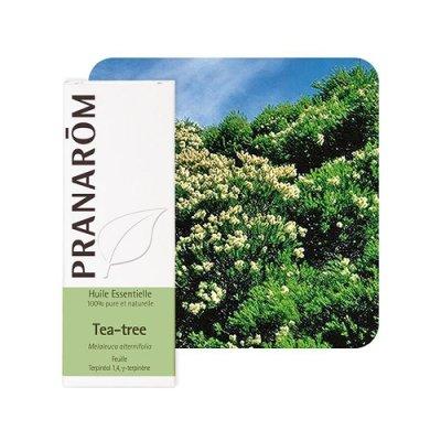 画像1: ティートゥリー 精油 10ml Pranarom / プラナロム