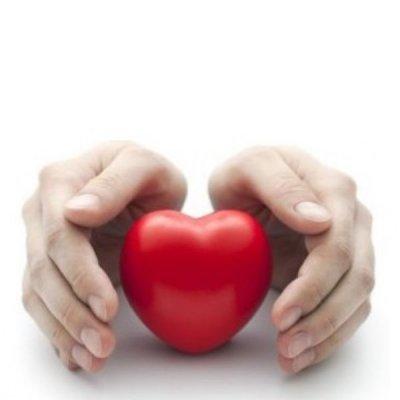 画像3: 【ジェモレメディ】BIOライラック・心臓強化 50ml (単体植物) Herbiolys / エルビオリス