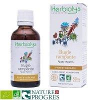 BIOアジュガ  傷や出血の回復をサポート マザーティンクチャー 50ml Herbiolys / エルビオリス