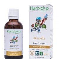 BIOウツボグサ マザーティンクチャー 吹き出物のケアや血液浄化に 50ml Herbiolys / エルビオリス