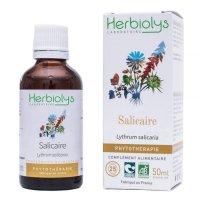 BIOエゾミソハギ マザーティンクチャー お腹のゆるみ解消や痔核のケアに  50ml Herbiolys / エルビオリス