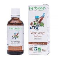 【ジェモレメディ】BIOアメリカヅタ・関節やリウマチのケアに 50ml (単体植物) Herbiolys / エルビオリス