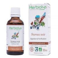 【ジェモレメディ】BIO西洋ニワトコ・消化促進や結石排除サポートに 50ml (単体植物) Herbiolys / エルビオリス