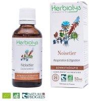 【ジェモレメディ】BIO西洋ハシバミ(ヘーゼル)  呼吸器疾患緩和に 50ml (単体植物) Herbiolys / エルビオリス