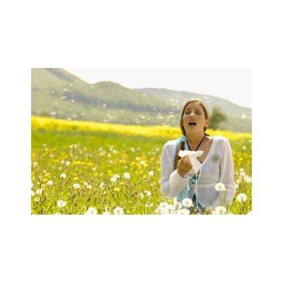 画像4: アラージェム  / 花粉症や様々なアレルギー対策に50ml・Herbalgem / ハーバルジェム