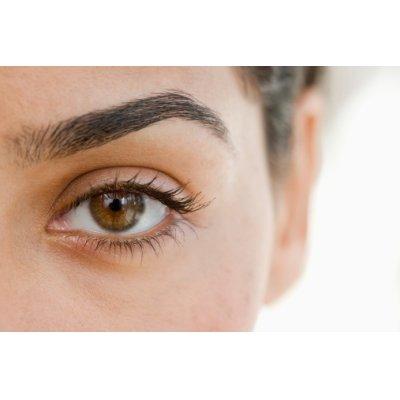 画像4: BIO西洋スノキ (ビルベリー) ジェモレメディ・ 視力向上、眼精疲労緩和に 50ml (単体植物) Herbalgem /ハーバルジェム