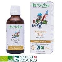 BIOイヌバラ (ドッグローズ) 花 マザーティンクチャー ビタミンC補給 50ml Herbiolys / エルビオリス