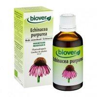 BIOエキナセア/風邪やインフルエンザの予防に・マザーティンクチャー Biover / ビオベール 50ml