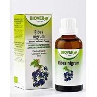 BIOカシスの葉(黒スグリ) マザーティンクチャー筋肉の柔軟やデトックスに biover / ビオベール 50ml
