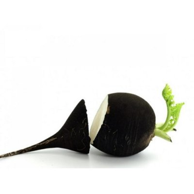 画像3: BIO黒ダイコンサプリ 肝臓・胆のうケア 120錠 Purasana / ピュラサナ