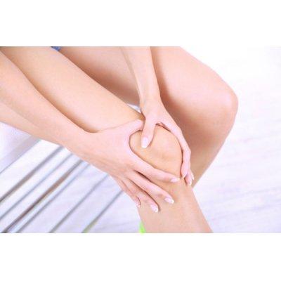 画像3: BIOハルパゴフィタム(デビルズクロー)サプリ 関節痛の緩和に 120粒 Purasana / ピュラサナ