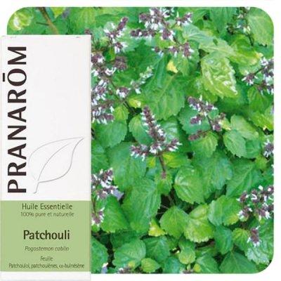 画像1: パチュリー精油 5ml Pranarom / プラナロム