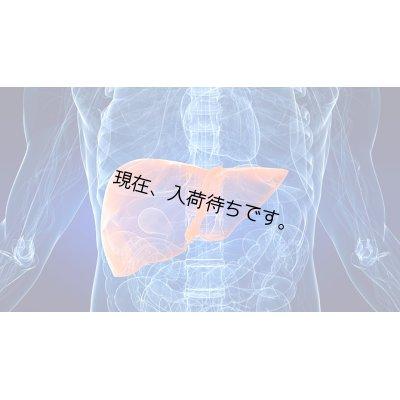 画像5: 【消化器・肝臓・腎臓の 浄化サポートパッケージ】サプリメント2本+ハーブティンクチャー1本
