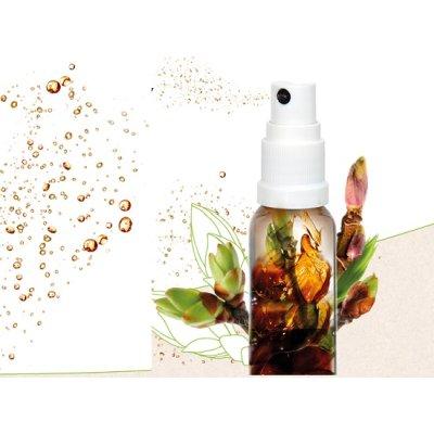 画像4: サノジェム / ウィルス対策、免疫力アップ スプレータイプ10ml・Herbalgem / ハーバルジェム