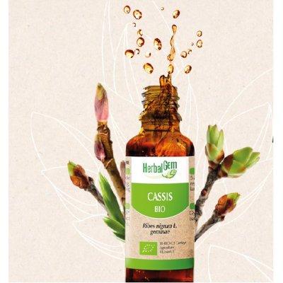 画像2: BIOカシス・ジェモレメディ 免疫力アップ・万能サポート 50ml (単体植物) Herbalgem /ハーバルジェム