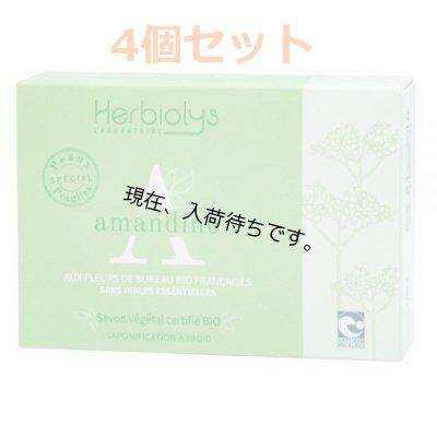 画像1: アーモンドBIO ソープ Herbiolys / エルビオリス 100g x4個セット