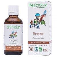 【ジェモレメディ】BIOギョウリュウモドキ・泌尿器や前立腺のトラブルに 50ml (単体植物) Herbiolys / エルビオリス