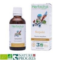 BIOクリーピングタイム マザーティンクチャー 呼吸器官、気道をサポート  50ml Herbiolys / エルビオリス