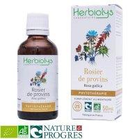 BIOフレンチローズ (ロサ・ガリカ) マザーティンクチャー 喉のサポート  50ml Herbiolys / エルビオリス