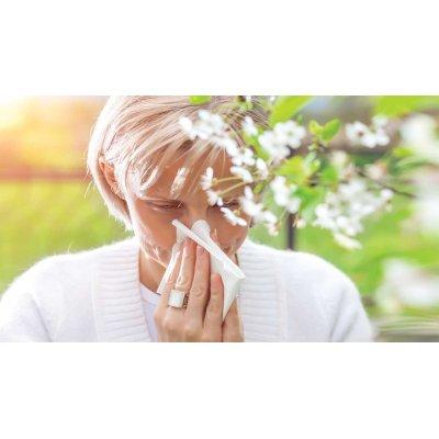 画像4: BIOイヌバラ(ドッグローズ) ジェモレメディ・免疫力アップ、耳鼻咽喉の働きを強化50ml (単体植物) Herbalgem /ハーバルジェム