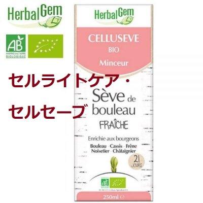 画像1: BIOシラカバシロップ/ セルライトケア・セルセーブ 250ml・Herbal Gem / ハーバルジェム