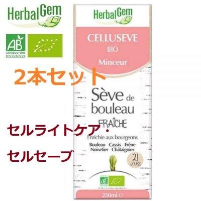 画像1: BIOシラカバシロップ/ セルライトケア・セルセーブ 250mlx2本セット・Herbal Gem / ハーバルジェム