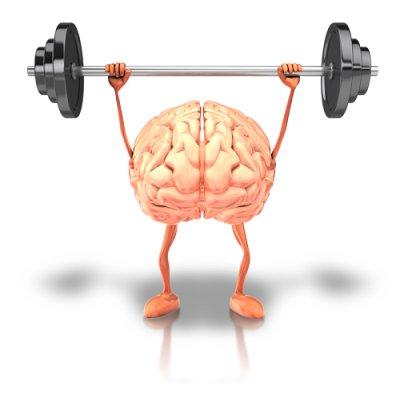 画像4: BIOオリーブ・ジェモレメディ・記憶力を高める、脳の働きを高める 50ml (単体植物) Herbalgem /ハーバルジェム