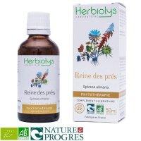 BIO西洋ナツユキソウ マザーティンクチャー 関節痛の緩和やデトックスに  50ml Herbiolys / エルビオリス