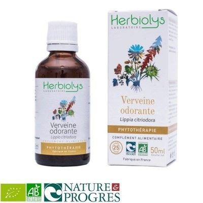 画像1: BIOレモンバーベナ マザーティンクチャー リラックスや消化促進に 50ml Herbiolys / エルビオリス