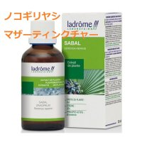 ノコギリヤシ マザーティンクチャー/ 精力アップ、前立腺ケアに 50ml Ladrome / ラドローム