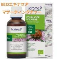 BIOエキナセア マザーティンクチャー/ ウィルス対策や免疫アップに 100ml Ladrome / ラドローム