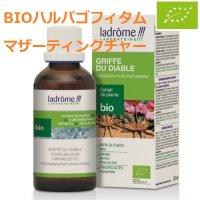 BIOハルパゴフィタム (デビルズクロー) マザーティンクチャー/ 関節痛緩和に 50ml Ladrome / ラドローム