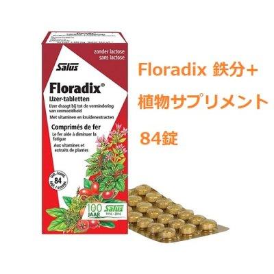 画像1: Floradix 鉄分+植物サプリメント 鉄分補給や妊活サポートに 84錠 Salus / サルス