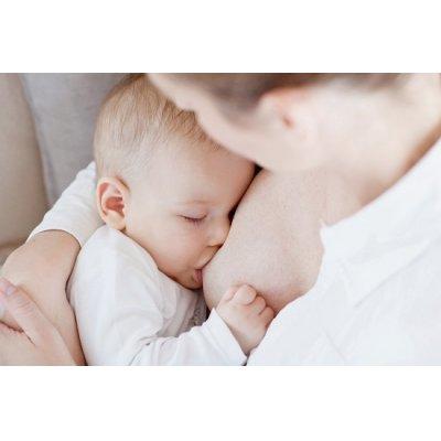 画像4: BIOフェンネル サプリ 消化補助や母乳の出を促進120錠 Purasana / ピュラサナ