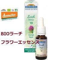 【フラワーエッセンス】No.19 BIOラーチ (ヨーロッパカラマツ) 自信をつける 15ml  Biofloral / ビオフローラル