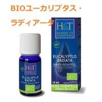 BIOユーカリプタス・ラディアータ 精油 10ml HERBES et TRADITIONS / エルブ&トラディション