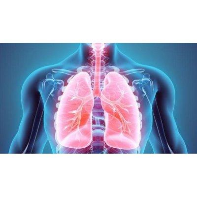 画像4: 【ジェモレメディ】BIOランタナガマズミ  喘息緩和とアレルギー対策に 50ml (単体植物) Herbiolys / エルビオリス