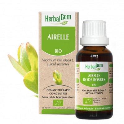画像1: BIOカウベリー (コケモモ)・ジェモレメディ・女性のホルモンバランスを整える 50ml (単体植物) Herbalgem /ハーバルジェム