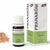 BIOフランキンセンス (乳香) 精油  5ml Pranarom / プラナロム