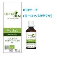 BIOラーチ (ヨーロッパカラマツ)・呼吸器強化、疲労緩和  50ml (単体植物) AlphaGEM / アルファジェム