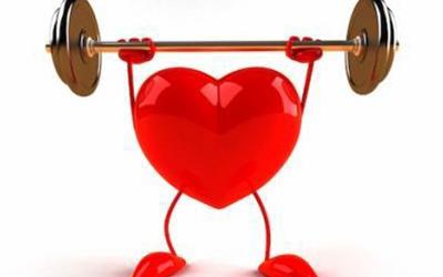 血液循環・心臓のケア